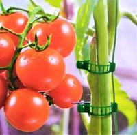 Клипсы для подвязки растений, зелёные, 50 шт