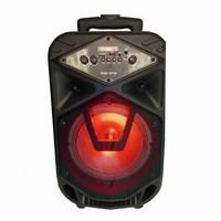 Портативная акустическая система BT SPEAKER-8110/0810