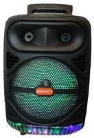 Портативная колонка с микрофоном DG-1086